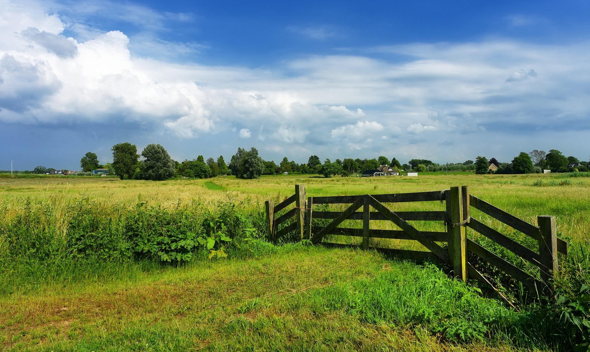 Tegenlicht zoekt pioniers op het platteland