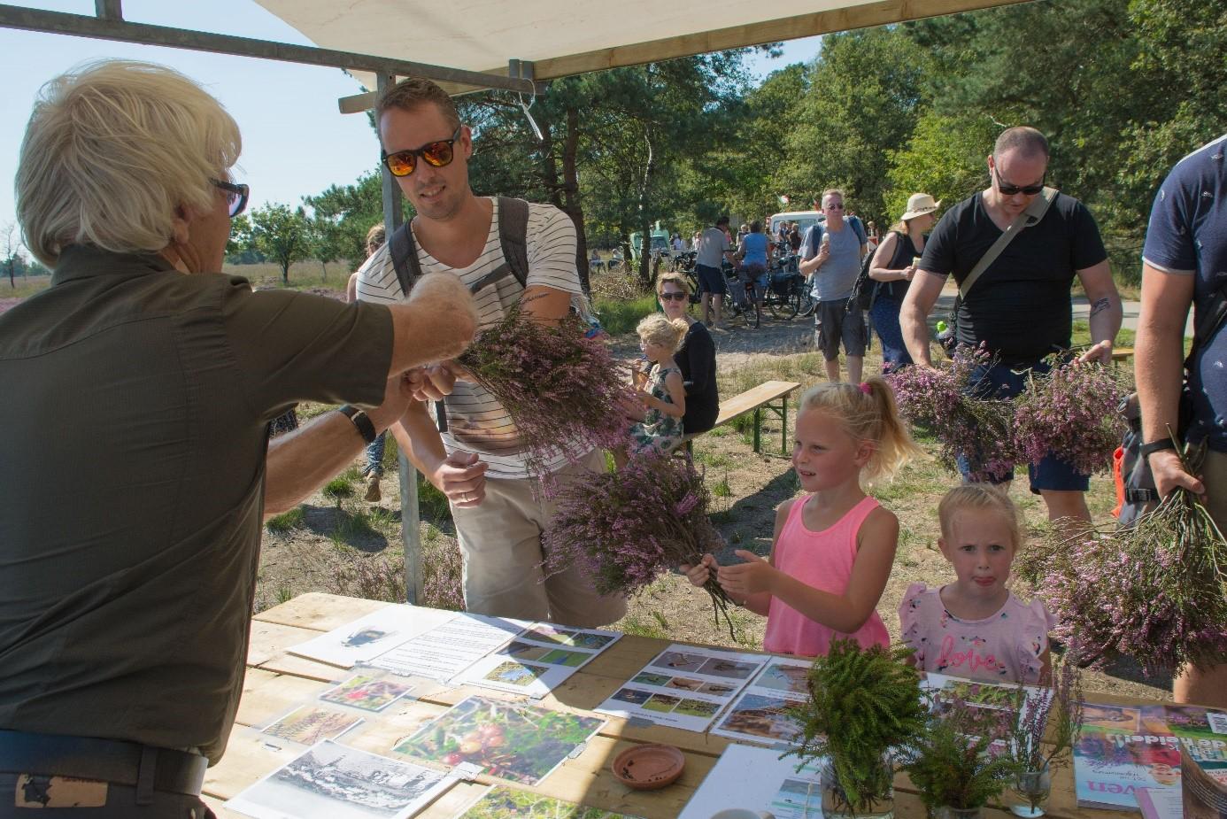 Op naar de Veluwe om dit weekend gratis een bosje heide te knippen
